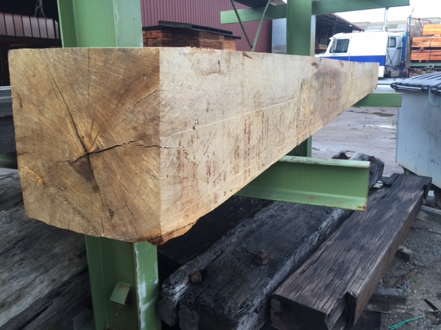 Blackbutt 350 x 350