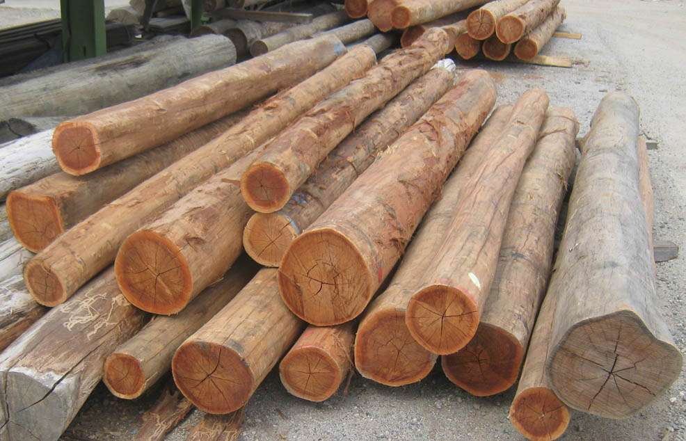 Bush Poles Timber Poles Outlast Timber Melbourne