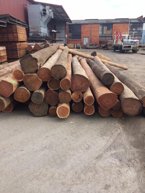 Ironbark log