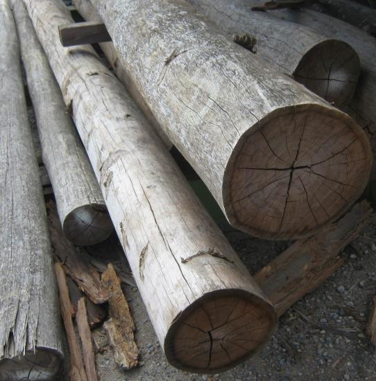 bush poles 3